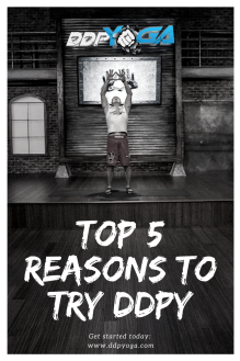 Top 5 reasons to try ddpy v2
